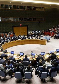 Nga đề nghị HĐBA LHQ họp bất thường về tình hình Syria