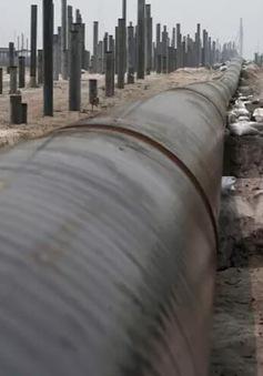 Malaysia hủy 3 dự án đường ống dẫn dầu với Trung Quốc