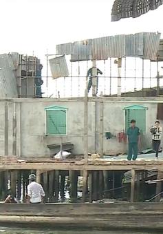 Người dân ĐBSCL lo lắng tình trạng sạt lở bờ sông gia tăng