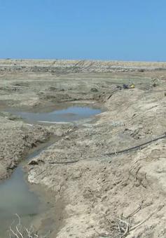 Khô hạn tại Ninh Thuận: Không loại trừ khả năng dừng sản xuất vụ mùa