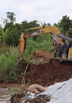 Vỡ đê bao và sạt lở gây thiệt hại nặng tại một số tỉnh ĐBSCL