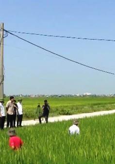 Kiểm tra phòng chống bão số 6 và sản xuất nông nghiệp tại Hải Phòng
