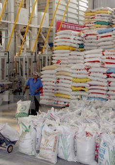 Xuất khẩu gạo tăng gần 30% về giá trị