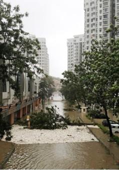 Châu Á có thể thiệt hại ít nhất 70 tỷ USD do siêu bão Mangkhut