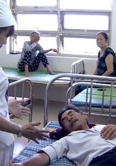 Phú Yên: Gia tăng số người bị rắn lục đuôi đỏ cắn