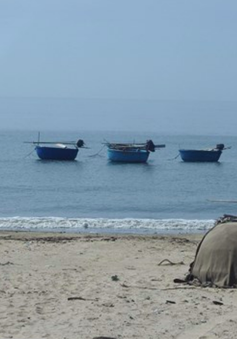 Sai phạm lớn khi chi trả tiền hỗ trợ sau sự cố môi trường biển ở Quảng Bình