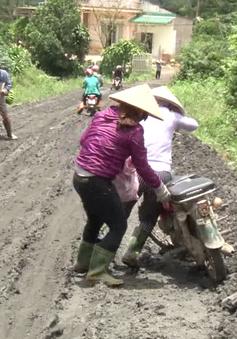 Lâm Đồng: Đường lầy hơn ruộng - nỗi khổ của người dân