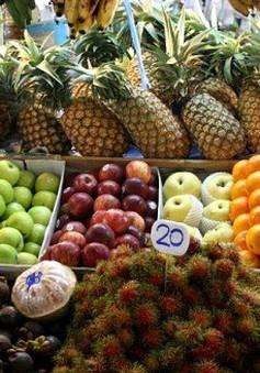 Thúc đẩy thương hiệu nông sản Việt Nam xuất khẩu tại Thổ Nhĩ Kỳ