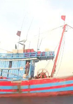 Gia tăng tình trạng sử dụng xung điện đánh bắt thủy hải sản