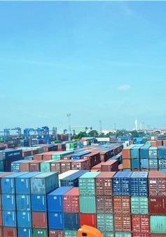 Từ 1/10, Tân cảng Sài Gòn ngưng tiếp nhận phế liệu nhựa về Cát Lái và Hiệp Phước