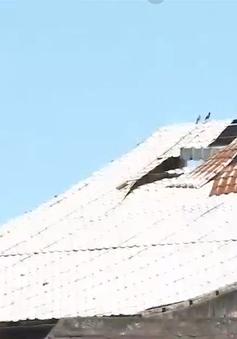"""Công trình nhà hoả táng """"tiền tỷ"""" bỏ hoang"""