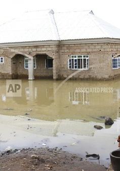 Số người thiệt mạng do lũ lụt ở Nigeria tiếp tục tăng