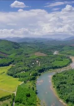 Những dòng sông chảy ngược ở Quảng Nam