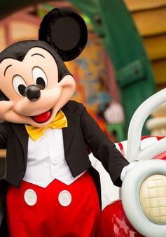 Những sự thật thú vị về chuột Mickey ít ai biết