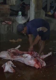 Chính phủ yêu cầu Sóc Trăng báo cáo liên quan đề án giết mổ gia súc, gia cầm