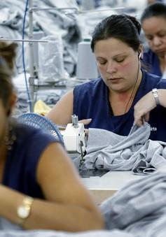 Châu Âu nỗ lực hạn chế bất bình đẳng giới trong trả lương
