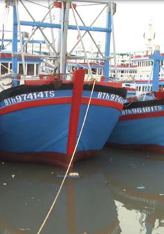 Phần lớn tàu thuyền Bình Thuận nằm ngoài vùng nguy hiểm của bão số 1