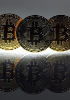 Bitcoin đang thăm dò vùng giá an toàn