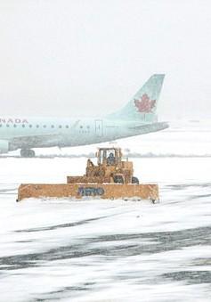 Hàng không Canada hỗn loạn vì giá lạnh