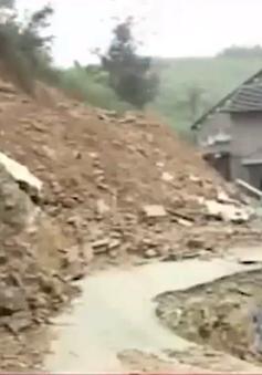 Quảng Nam có hơn 200 căn nhà được hỗ trợ sửa chữa sau thiên tai