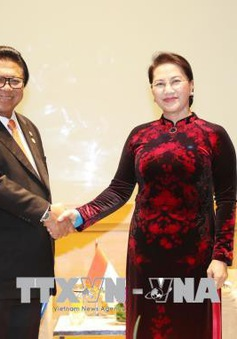 Chủ tịch Quốc hội tiếp Chủ tịch Hội đồng đại biểu địa phương Indonesia