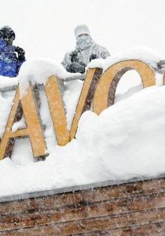 Nhiều cuộc họp tại Davos bị hủy hoãn do tuyết rơi dày