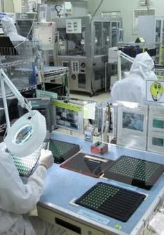 WB: Việt Nam là một trong những nước tại châu Á thu hút mạnh FDI