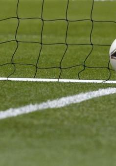 Hiệp hội bóng đá nhà nghề Pháp ngừng sử dụng công nghệ Goal-line