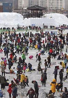Tưng bừng lễ hội câu cá trên băng ở Hàn Quốc