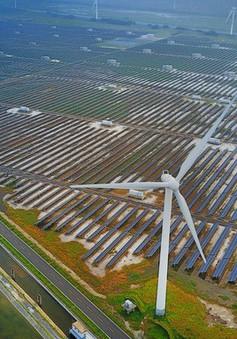 Ấn Độ đánh thuế mạnh với thiết bị năng lượng mặt trời của Trung Quốc và Malaysia