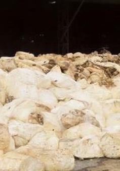 Nhà máy mủ cao su APT ở Kon Tum vẫn hoạt động dù đã có thông báo dừng vận hành