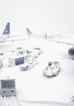Bão tuyết gây thiệt hại nặng nề tại Mỹ