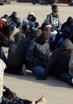 Libya giải cứu khoảng 270 người di cư gặp nạn ngoài khơi