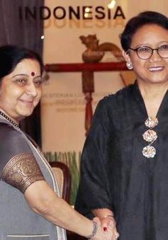 Thúc đẩy hợp tác Indonesia - Ấn Độ