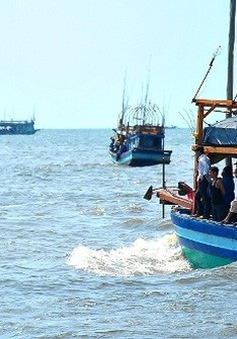 Loại bỏ khai thác hải sản bất hợp pháp