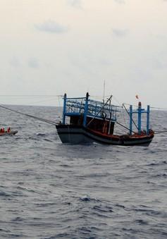 Thời tiết xấu làm 3 tàu cá bị chìm, 12 ngư dân mất tích