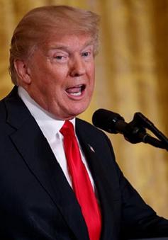 Tổng thống Trump gửi lời cảm ơn CEO Apple về quyết định đầu tư mới vào Mỹ