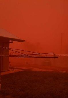 Bão bụi biến bầu trời Australia thành màu đỏ