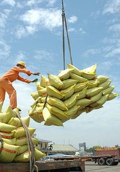Tăng trưởng kinh tế Việt Nam năm 2019 có thể đạt 6,9%