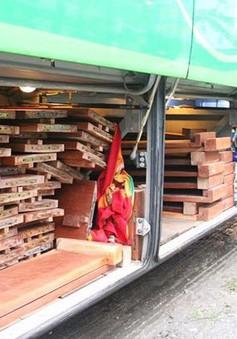 Bắt 2 xe khách giường nằm chở gỗ không rõ nguồn gốc