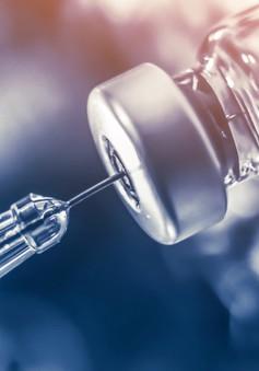 Phát triển công nghệ rút ngắn thời gian điều chế vaccine