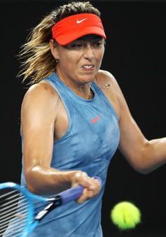 Australia mở rộng 2019: Sharapova biến Wozniacki thành nhà cựu vô địch