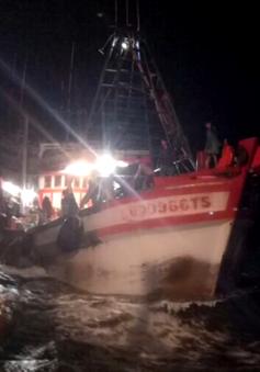 4 thuyền viên bị ngạt khí hầm cá