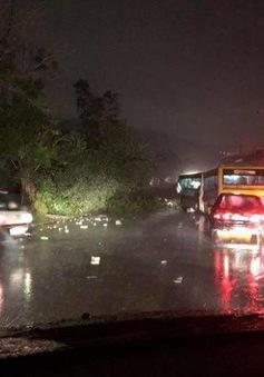 Lốc xoáy ở La Habana khiến 3 người thiệt mạng