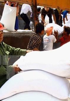 Hỗ trợ hơn 3.700 tấn gạo cho người dân nghèo ở 6 tỉnh ăn Tết