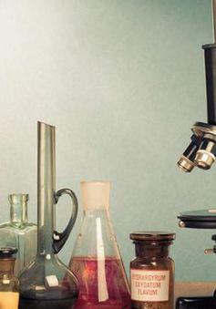 Thí nghiệm khoa học đặc biệt kéo dài… 500 năm