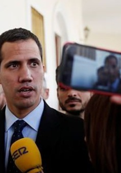 Venezuela áp đặt lệnh cấm xuất cảnh đối với ông Juan Guaido