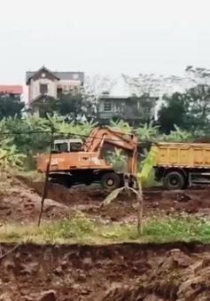 Đất nông nghiệp tại Đông Anh, Hà Nội được cấp phép khai thác cát: Nguồn gốc đất vẫn chưa rõ ràng