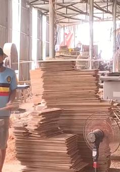 Tiềm ẩn nguy cơ tai nạn lao động tại các làng nghề mộc
