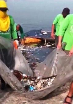 Cá chết hàng loạt tại khu du lịch sinh thái Philippines